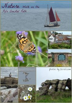 Nature walk fife coastal path from Anstruther to Cambo via Crail and Fife Ness
