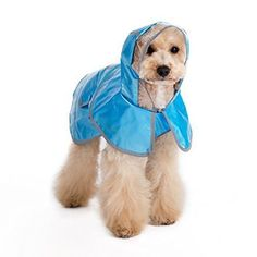 DOGO Jelly Raincoat (M, BLUE)