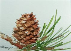 pine bow and pine cone - simple, pretty