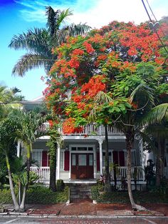 Key West Architecture by abeand, via Flickr