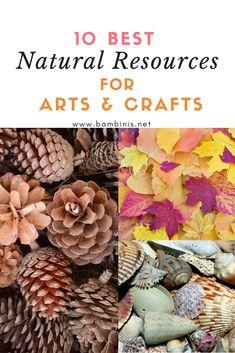 10 Best Natural Resources for Arts & Crafts Crafts For Kids, Arts And Crafts, E Craft, Natural Resources, Craft Tutorials, Nature, Crafts For Toddlers, Kids Arts And Crafts, Naturaleza
