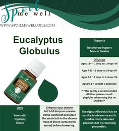 How to use Eucalyptus Globulus Eucalyptus Globulus can be used to support the respiratory system, circulatory system, and is used in many skin products.For centuries, Austrailian Aborigines used t…