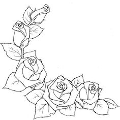 Drawing a rose. Discussion on LiveInternet - Russian Service Online Diaries