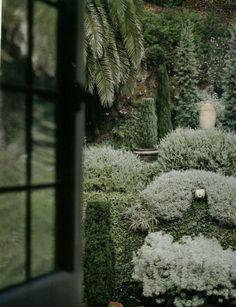 silver blues garden