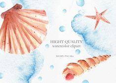 Watercolor Sea Shells Clipart Instant Digital Download image 3