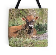 'potty cow' Tote Bag by shotbysas . Framed Prints, Canvas Prints, Art Prints, New Bag, Bag Sale, Laptop Sleeves, Cow, Greeting Cards, Iphone Cases