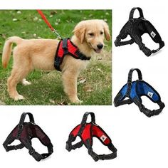 TAILUP Four Color Choices S/M/L/XL Mesh Cloth Pet Dog Collar Dog Use Harness Supplies