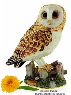 Trinket Box: Barn Owl
