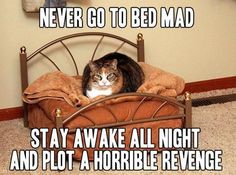 Never go to bed mad. Stay awake all night and plot a horrible revenge.