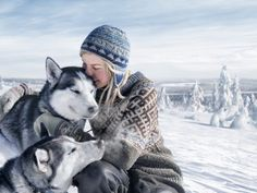 Article Call of the Wild – Meet Tinja and Her Dogs/Finland/Siberian husky Lappland, Husky, Safari, Lapland Finland, Call Of The Wild, Mundo Animal, Winter Is Coming, Mans Best Friend, Belle Photo