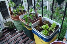 How to make self watering containers