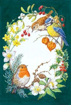 PortForLio - Robin, Wren and Blue Tit with holly, ivy etc Merry Christmas Gif, Christmas Art, Christmas Greetings, Holly Pictures, Flower Drawing Tutorials, Bird Coloring Pages, China Painting, Vintage Birds, Christmas Illustration