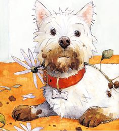Good Boy Fergus- he's a Westie! This is one of my favorite David Shannon books! I Love Dogs, Puppy Love, David Shannon, West Highland Terrier, White Terrier, Dog Paintings, White Dogs, Watercolor Animals, Westies