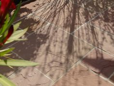 Eine Terrassenboden, der zum Träumen einlädt: Sandstein-Platten Modak – jonastone
