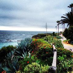 montage restort laguna beach via @happymundane on Instagram