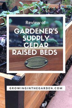 Gardener's Supply Cedar Raised Beds Cedar Raised Garden Beds, Raised Beds, Colorful Bedding, Fall Containers, Organic Gardening Tips, Front Yard Landscaping, Garden Supplies, Vegetable Garden, Gardening Vegetables
