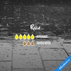 Rain - Essential Oil Diffuser Blend