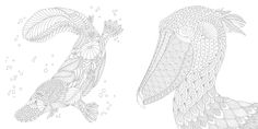 Millie Marotta's Curious Creatures by Millie Marotta (Pavilion): shortlisted in The Best Colouring Book category