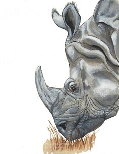 Rhinocerus Archival Art Print from my original watercolor painting. African Wildlife, Safari Animal, Kid's Art, Nursery wall decor or shelf art Add a touch of the wild to your decor, kid's rooms or nursery decor with this Rhino print. Description