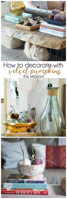 Beautiful ways to display velvet pumpkins this season!
