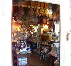 Looking inside Heart's Ease Herb shop; love the drying herbs hanging from ceiling