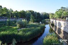 El Ter al seu pas per Girona
