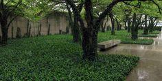 South Garden, Art Institute of Chicago / Daniel Kiley