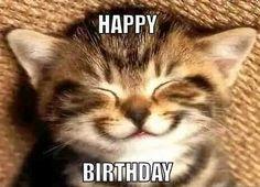 Happy birthday funny cats, cat birthday memes, cat birthday wishes, happy birthday coffee Funny Animal Memes, Cute Funny Animals, Funny Animal Pictures, Cute Baby Animals, Cat Memes, Funny Cute, Smiling Animals, Cute Pictures, Humorous Animals