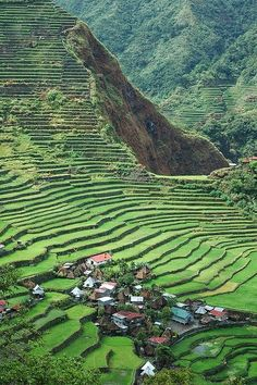 Clustered village in the Batad Rice Terraces, Banaue, Philippines