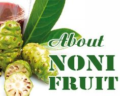 Noni Juice, Noni Fruit, Body Systems, Natural Supplements, South Pacific, Bitter, Juices, Health Benefits, Islands