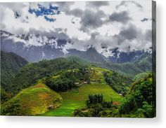 Rice fields in Sapa village, Vietnam Acrylic Print by Denys Siryk. All acrylic prints are professionally printed, packaged, and shipped within 3 - 4 business days and delivered ready-to-hang on your wall. Thing 1, Acrylic Sheets, Got Print, Any Images, Your Image, Clear Acrylic, Fine Art America, Fields, Vietnam