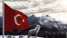 Türk Bayrağı ve Kurt Duvar Kağıdı Wallpaper Instagram Images, Instagram Posts, Insta Saver, Like4like, Meet, Selfie, Logos, Friends, Amazing