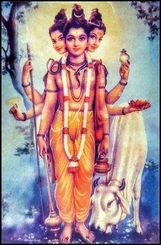 Datta Hanuman Photos, Krishna Pictures, Saints Of India, Lord Hanuman Wallpapers, Swami Samarth, Krishna Art, Lord Krishna, Lord Shiva Hd Images, Lord Murugan