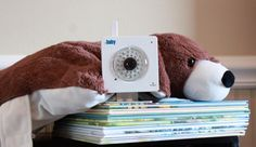 WiFi Baby, bear.