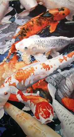 Portfolio of Works: Koi & Waterlilies Koi Art, Fish Art, Koi Fish For Sale, Koi Painting, Watercolor Fish, Japanese Koi, Carpe, Fish Ponds, Beautiful Fish