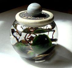 Agate Planet Sphere. Stone Top. Unique. Terrarium