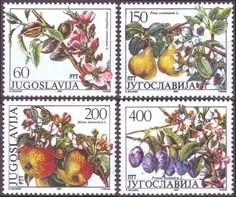 Yugoslavia Fruits May 15, 1987 Almond (Amigdalus communis L.) Pear (Pirus communis L.) Apple (Malus domestica L.) Prune (Prumus domestica L.)