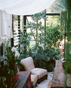 Really like this, with all the plants in front of the windows. Indoor privacy, without totally screening out the outdoors ... the room almost becomes an extension of outside as the fact of a window almost becomes invisible ... might work for my particular issue with the nosy neighbors?