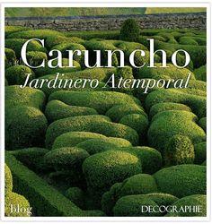 Caruncho, #Jardinero Atemporal