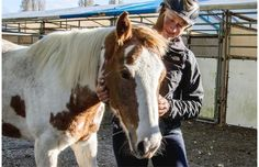 Video: Ponies rescued from meat slaughter