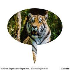 Siberian Tiger Amur Tiger Panthera Tigris Altaica Cake Topper