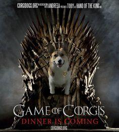 corgi game of thrones | Game of Corgis – New Poster | Corgi Dogs