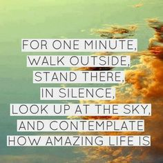 """For one minute, walk outside, stand there, in silence, look up at the sky, and contemplate how amazing life is."" #inspiration"