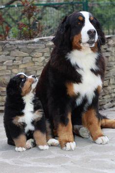 Looking up to big sis!