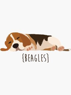Source by The post 'Beagles' Sticker by Cat O'Brien appeared first on McGregor Dogs. Beagle Facts, Beagle Funny, Dog Lover Quotes, Dog Lovers, Beagle Colors, Beagle Tattoo, Cute Beagles, Beagle Mix, Dog Illustration