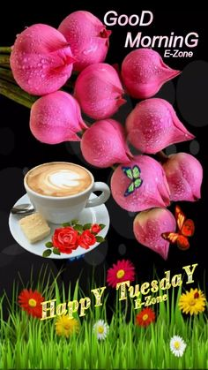Good Morning Tuesday, Happy Tuesday, Good Morning Messages, Good Morning Images, Night Photos, Krishna, Quotes, Good Morning Gif, Good Morning Wishes