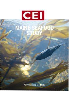 Maine Seafood Study