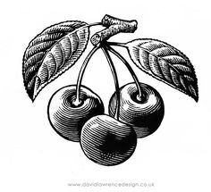 Image for a bottle of Cherry wine sold by English Heritage in their gift shops.