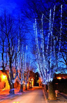 Google Image Result for http://img.archiexpo.com/images_ae/photo-g/light-garland-for-public-spaces-led-703886.jpg
