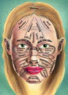 Let's face it!) Chinese face map & Body health all the reflexology charts Health And Beauty Tips, Health Tips, Health And Wellness, Health Fitness, Health Diary, Health Yoga, Health Recipes, Mental Health, Chinese Face Map
